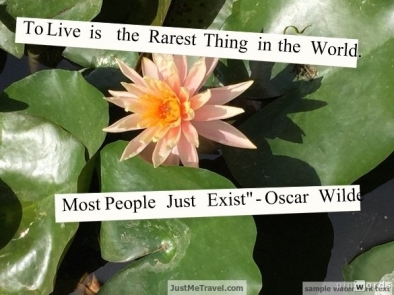 To live is the rarest thing in the world. most people just exist